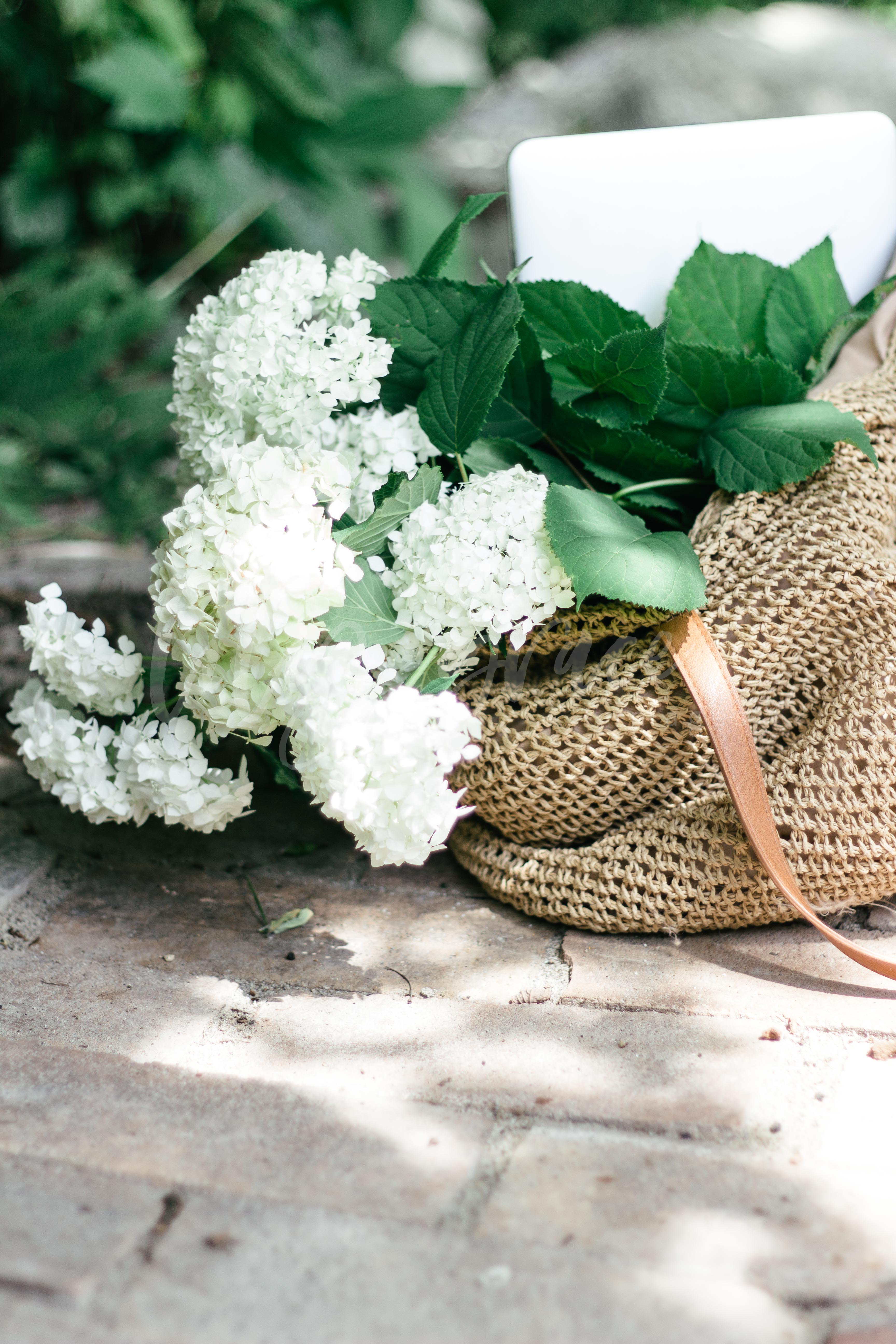 barrie stock photography, barrie, stock photos, photos for instagram, real photos, lilygrace images, toronto stock photography, bag, flowers, white and green, shadows, pond, outdoor stock photos
